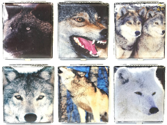 3101L20WOLF Wolf Designs Wrinkled Leather Wrapped Holds 20 Cigarettes 100s Size (12PC)