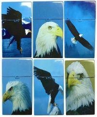 3117D12 Eagle Designs Plastic Cigarette Case 100s Size Push Open (12PC)