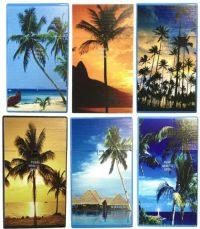 3117D13 Palm Tree Designs Plastic Cigarette Case 100s Size, Push Open (12PC)