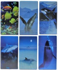 3117D16 Sea Designs Plastic Cigarette Case 100s Size, Push Open (12PC)