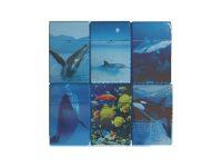 3114D18 Sea Design Plastic Cigarette Case King Size, Flip Open (12PC)