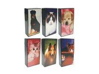 3115D10 Pet Design Plastic Cigarette Case 100s Size, Flip Open (12PC)
