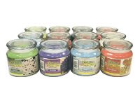 CANDLE12oz 12 oz Smoker's Candle Orange Ginger Scent (12PC)